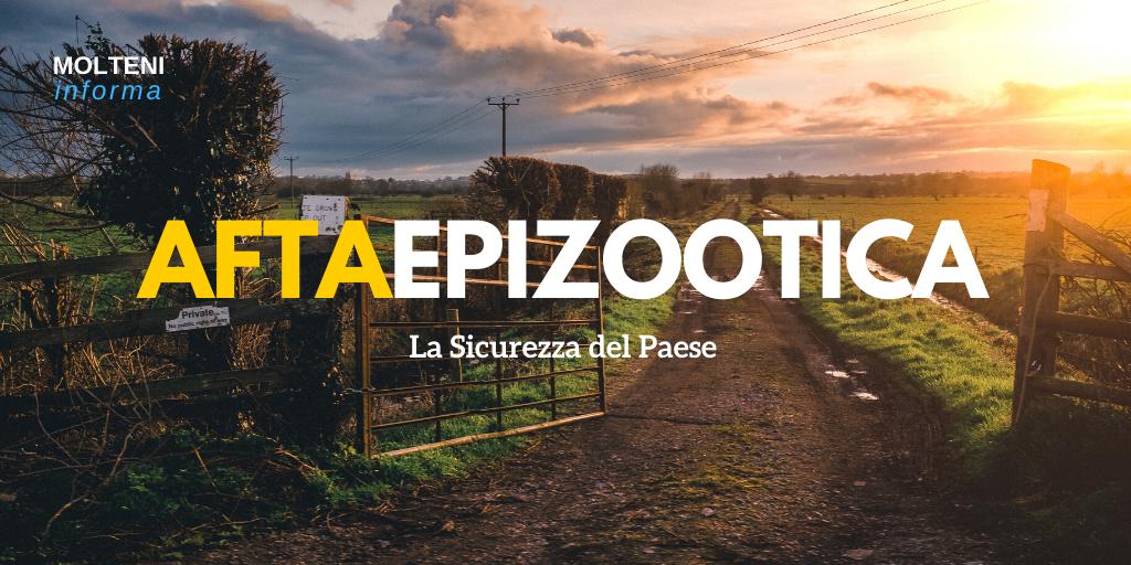 afta epizootica: informazioni